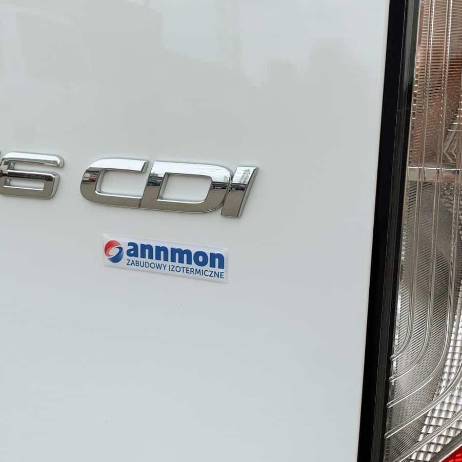 naklejki wypukłe na samochodzie z logo annmon